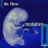 incubationfirst.jpg